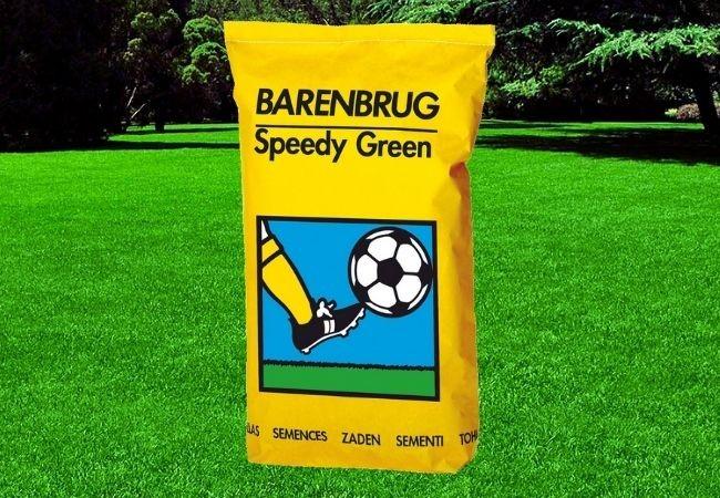 Barenbrug Speedy Green