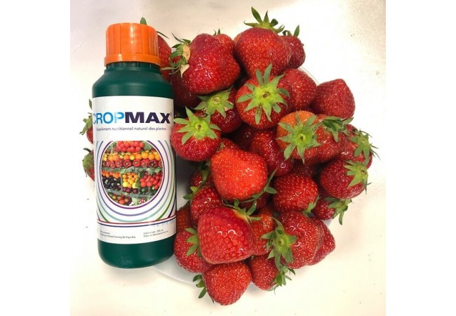 cropmax 250 ml 2