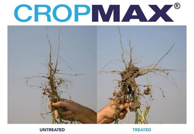 cropmax 2