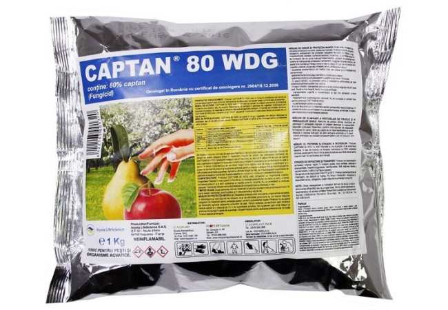 Captan 80 WDG, 100 kg