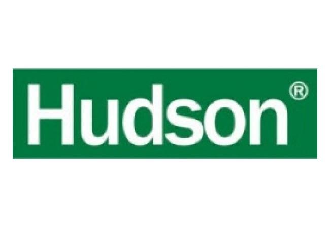 Erbicid Hudson, 1 litru