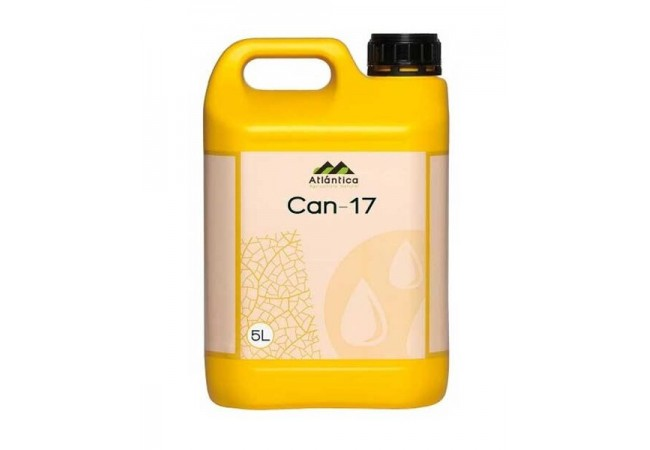 Can 17